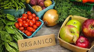 Vamos Exportar Orgânicos? | Nosso Foco