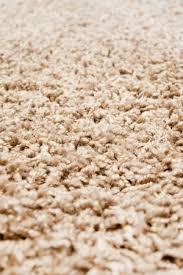 homemade carpet cleaner bob vila