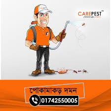 Termite Control Service   Termite control, Best pest control, Pest control  services