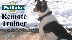 Remote Trainer From Petsafe Youtube