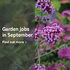 Homebase Garden Jobs In September Milled