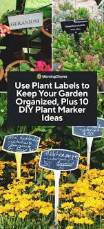 labels to keep your garden organized