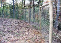 30 Deer Fence Ideas Deer Fence Fence Deer