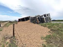 Overturned trailer spills 80,000 pounds of almond shells along I-5 west of  Bakersfield | News Break