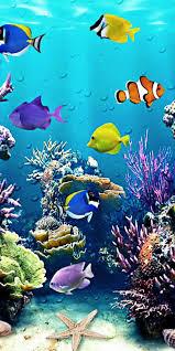 خلفيات بحر و أسماك للهواتف الذكية 2020 Fish Phone Wallpapers