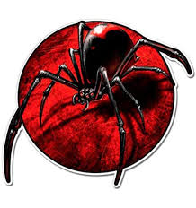 Amazon Com Black Widow Spider Vinyl Sticker Waterproof Decal Sports Outdoors