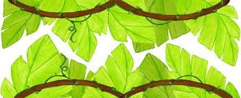 Jungle Leaf Wall Border To Design A Jungle Theme Kids Room