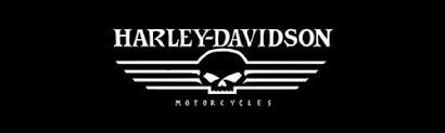 Skull Wing Harley Davidson Rear Window Graphic Custom Vinyl Graphics