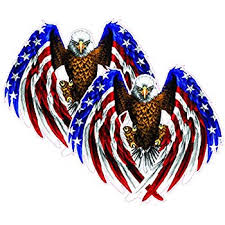 Amazon Com Bald Eagle American Flag Eagle Wings Magnet Decal Is 5 5 In Size From The United States Automotive