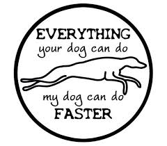 Greyhound Car Decal Whippet Galgo Car Sticker Whippet Dog Bumper Stickers Greyhound