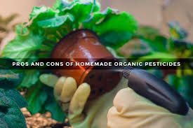 cons of homemade organic pesticides