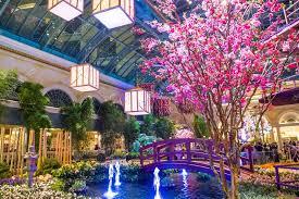 bellagio hotel conservatory botanical