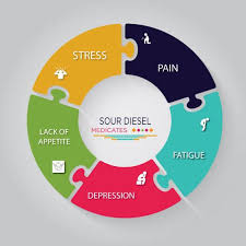 Buy Sour Diesel Seeds Online - Farmers Lab Seeds