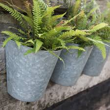 Buy Set Of Three Galvanised Wall Planters Delivery By Waitrose Garden
