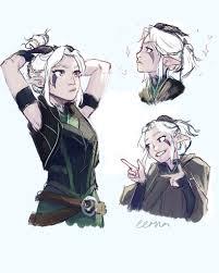 aaron ehasz (@aaronehasz) | Twitter (With images) | Dragon princess,  Character art, Dnd characters