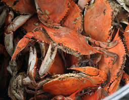 fresh, steamed crabs in Richmond ...