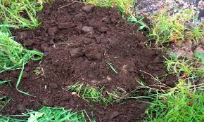 5 diffe soil types know your soil