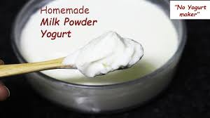 yogurt with milk powder powdered milk