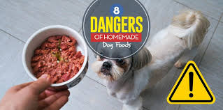 8 dangers of diy homemade dog food and