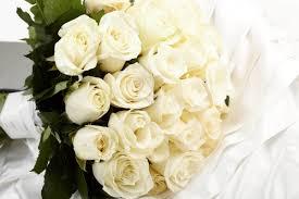 رمزيات زهور ناعمة صور زهور جميلة للواتس مجلة البرونزية