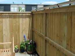 Photos Of Oscillot Cat Fencing Installations Catfence Nz Cat Fence Diy Cat Enclosure Cat Proofing