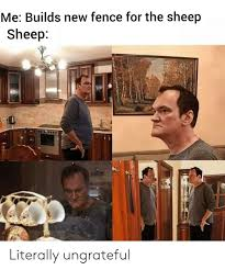 Me Builds New Fence For The Sheep Sheep Literally Ungrateful Sheep Meme On Me Me