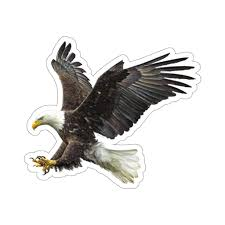Bald Eagle Sticker Claw Flying American Bird Raptor Laptop Decal Viny Starcove Fashion