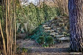 Beautiful Garden On The Background Of The Wall Of Ordinary Ivy On The Fence Of The