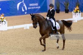 Wendi Williamson performs at The Sydney Concours de Dressage... News Photo  - Getty Images