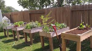 15 unusual diy vegetable gardens