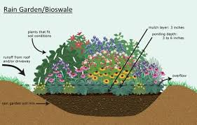 powerhouse growers rainwater harvesting