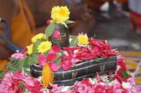 Image result for shivling pooja images