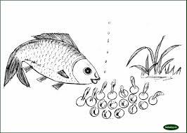 """Bộ tranh tô màu theo nội dung """"Vòng đời của cá"""" – Bé tư duy"""