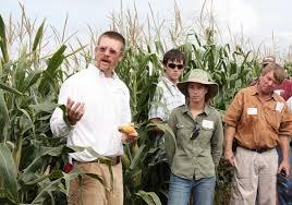 Heroes of the Harvest: Breeding program brings better, safer corn to South    USDA