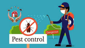 in Home Residential Pest Control Services, in Delhi Ncr, | ID: 22250599612