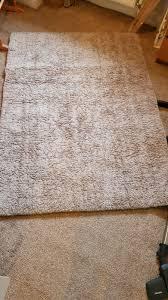 dunelm teddy bear rug in emsworth