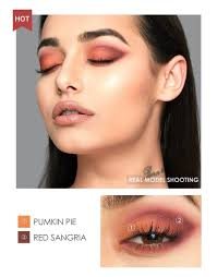focallure 18 colors all mate eye shadow