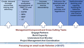 marine tenure and small scale fisheries learning from the