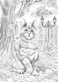 The Best Free Adult Coloring Book Pages Dieren Kleurplaten