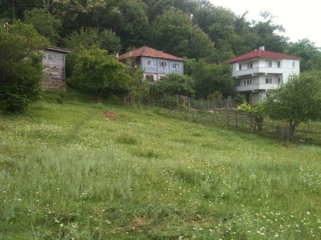 """Kastamonu Çatalzeytin   Saraçlar köyü ile ilgili görsel sonucu"""""""