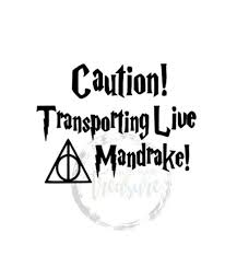 Live Mandrake Baby On Board Decal Transporting Live Mandrake Car Decal Mandrake On Board Decal Talkingbread Co Il