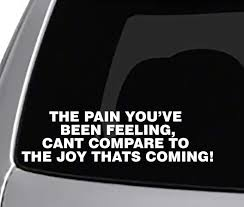 Amazon Com Seek The Pain You Ve Been Feeling Decal Car Truck Window Sticker Life Quotes Automotive