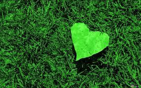 صور قلوب خضراء أجمل قلوب حب رومانسية مكتوب عليها