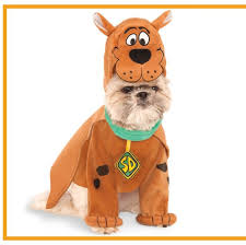 funny dog and puppy costumes for cute pet halloween
