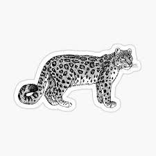 Leopard Stickers Redbubble