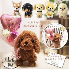 mother s day chihuahua miniature daks