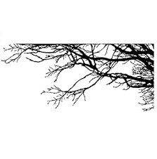 Large Tree Wall Decal Sticker Semi Gloss Black Tree Branches 44in X 100in Right To Left Removable No Paint Needed Tree Branch Wall Stencil The Easy Way B00zjg1ehs Amazon Price Tracker
