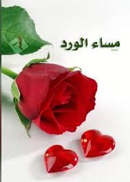 مساء الورد لاحلى ورد حياتى مع الورد احساس دائم بالحب فنجان قهوة
