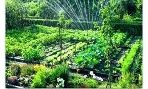 vegetable garden designs backyard plans