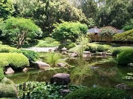 brisbane botanic gardens mt coot